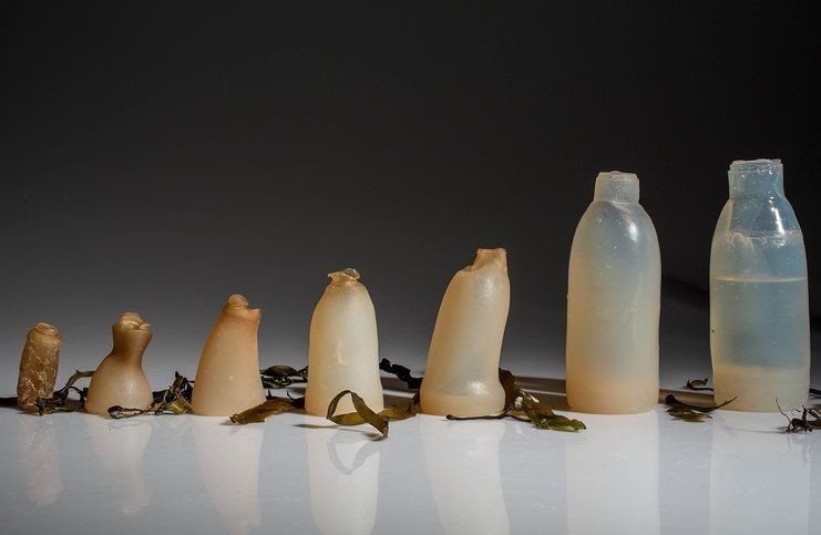 A Revolutionary change to Next Gen Plastic – Edible or Biodegradable Plastic