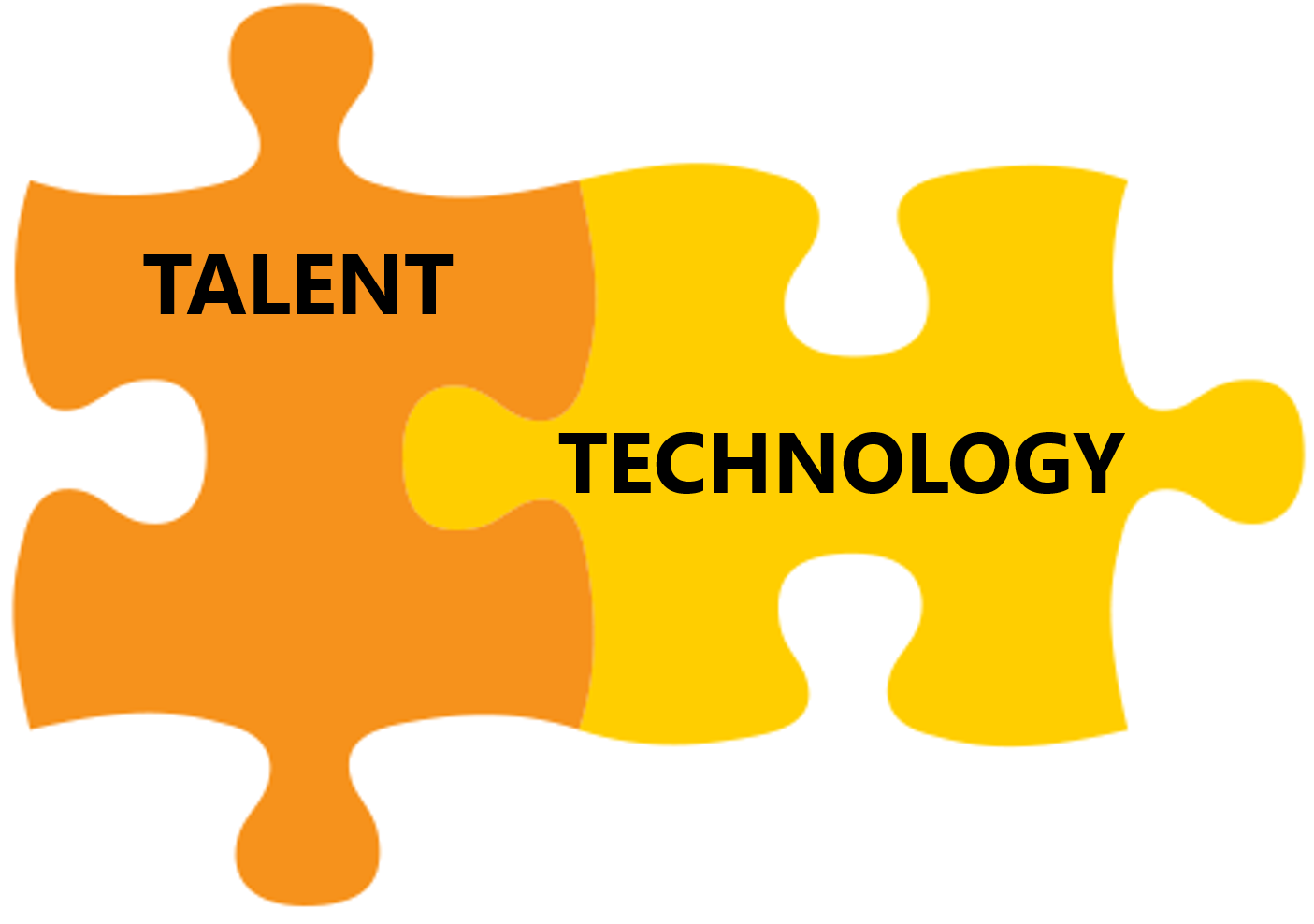 Talent Management: Use of Technology and Analytics