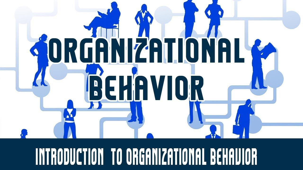 Introduction To Organisational Behavior
